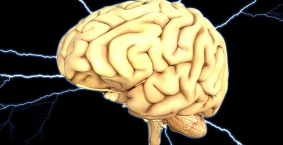 Brain scan studies shed light on ADHD